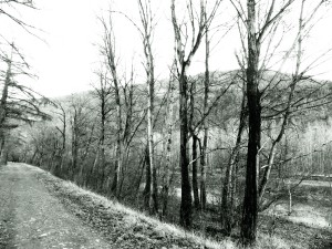Berges de l'Anastase